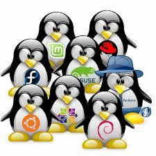 Penguins representing different Linux distros